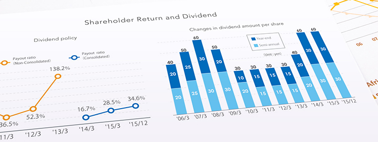 Shareholder Return and Dividend